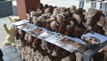 Hulphonden demonstratie & lezing