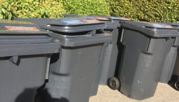Inzameldagen afval in 2021